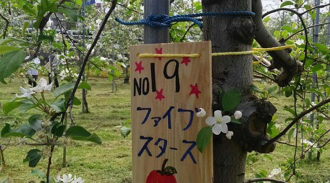 魚津リンゴ木 オーナー農園見学会(女性会)
